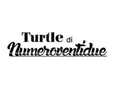 Turtle-Numero-22