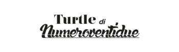 turtle-di-numero-ventidue